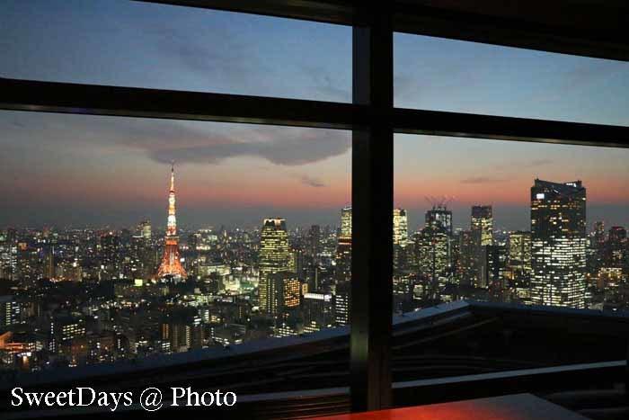 Tokyo Tower - 東京タワー_e0046675_05283867.jpg
