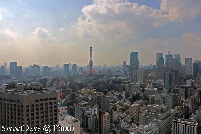 Tokyo Tower - 東京タワー_e0046675_05284710.jpg