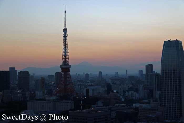 Tokyo Tower - 東京タワー_e0046675_05285372.jpg