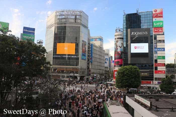 Shibuya in Tokyo - 渋谷_e0046675_05412526.jpg