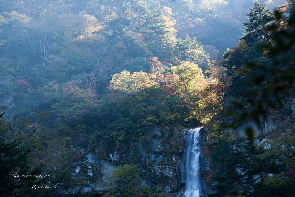 10月半ばの精進ヶ滝_c0137403_14352386.jpg