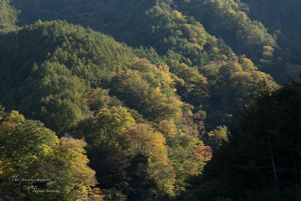 10月半ばの精進ヶ滝_c0137403_1440587.jpg