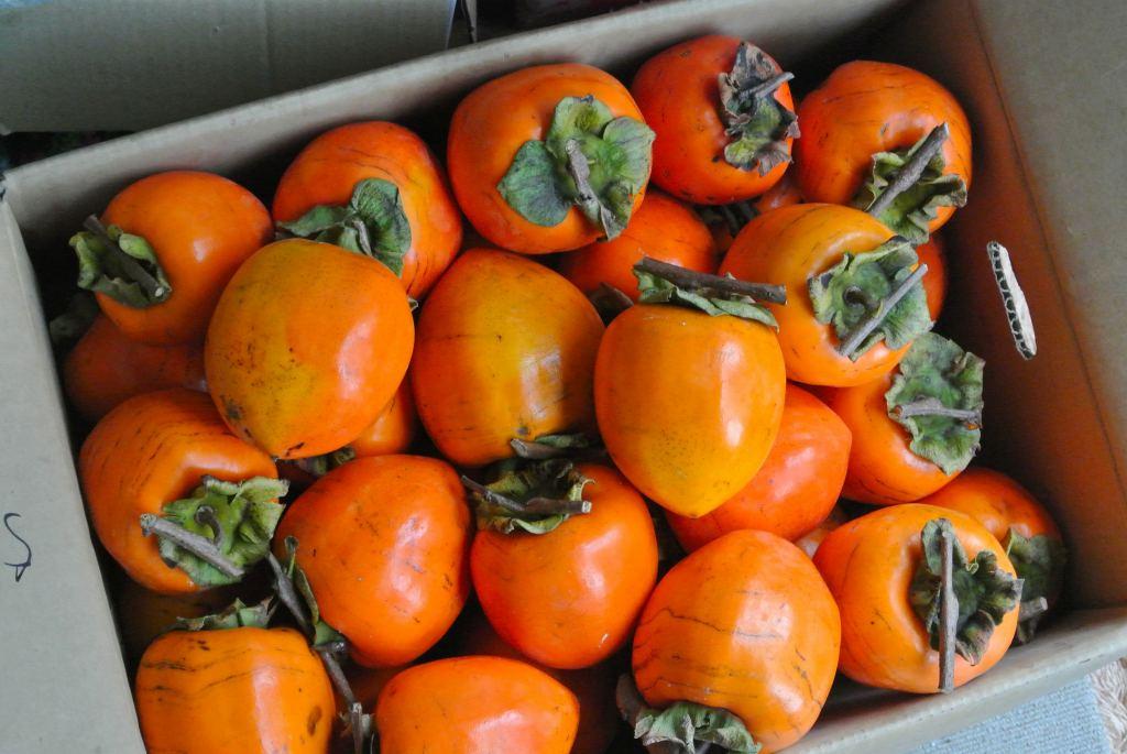 干し柿用「蜂谷柿」を入手_a0148206_10385994.jpg