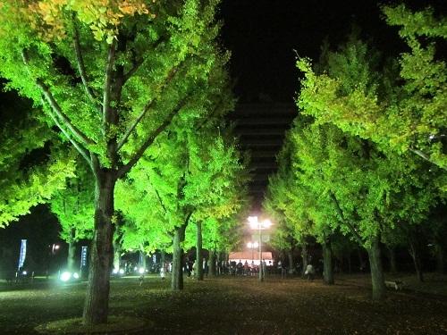 熊本県庁のライトアップ_b0228113_13203719.jpg