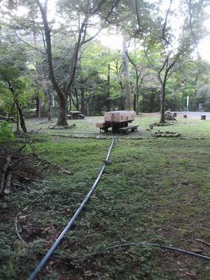「さくら公園」のかじか(鰍)_f0289632_13204424.jpg