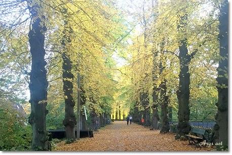 久しぶりの旅 ~美しすぎるブルージュの秋~_c0243369_12421330.jpg