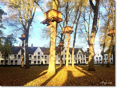 久しぶりの旅 ~美しすぎるブルージュの秋~_c0243369_12424359.jpg