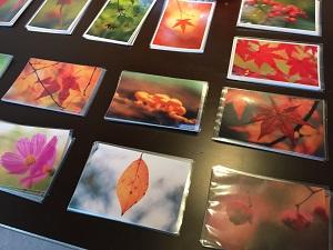 無垢ニットと写真展 2015秋冬_f0233340_1584214.jpg