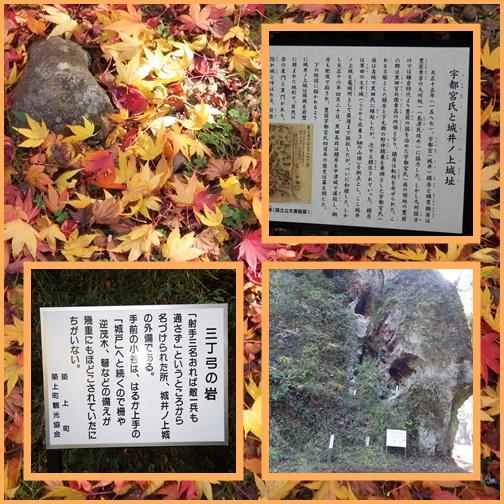 城井ノ上城址・・他城のイロハモミジ_e0164643_14215537.jpg