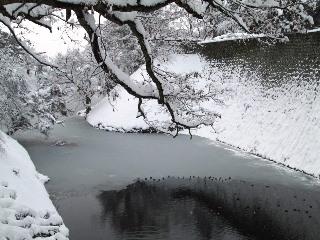 鶴ヶ城公園_d0348249_16341374.jpg