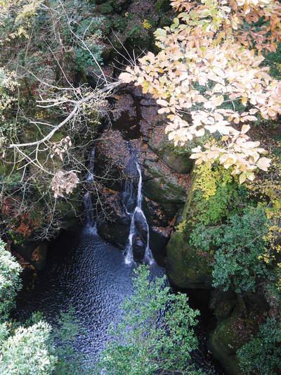 紅葉狩りにおすすめ!!菊池渓谷と菊池、阿蘇スカイラインの紅葉の穴場スポットを紹介!その2_a0254656_18144549.jpg