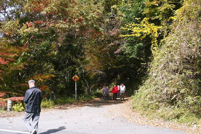 紅葉狩りにおすすめ!!菊池渓谷と菊池、阿蘇スカイラインの紅葉の穴場スポットを紹介!その2_a0254656_1818264.jpg