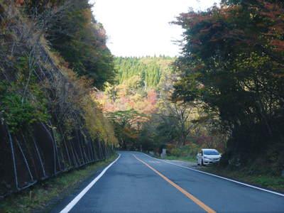紅葉狩りにおすすめ!!菊池渓谷と菊池、阿蘇スカイラインの紅葉の穴場スポットを紹介!その2_a0254656_1837575.jpg