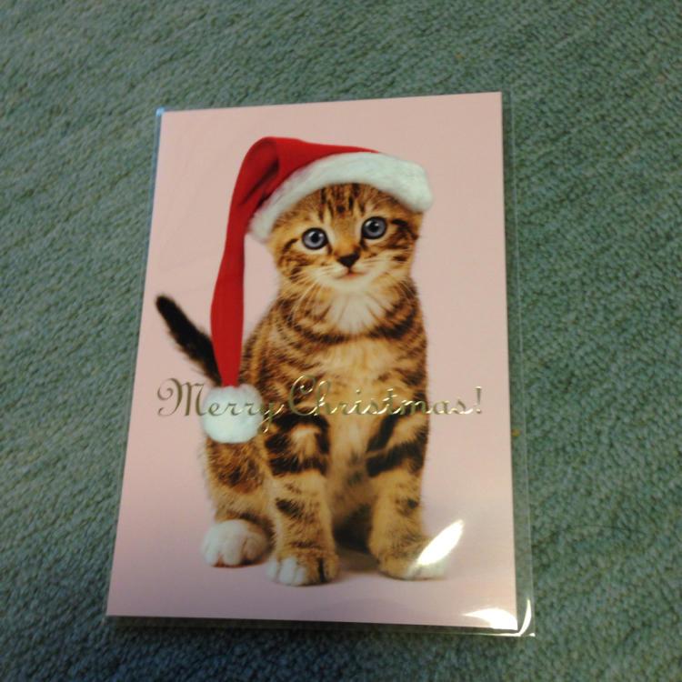 今年も もうクリスマス_c0185356_09084938.jpg
