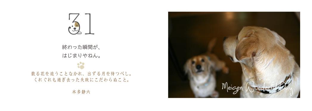 f0355165_15563969.jpg