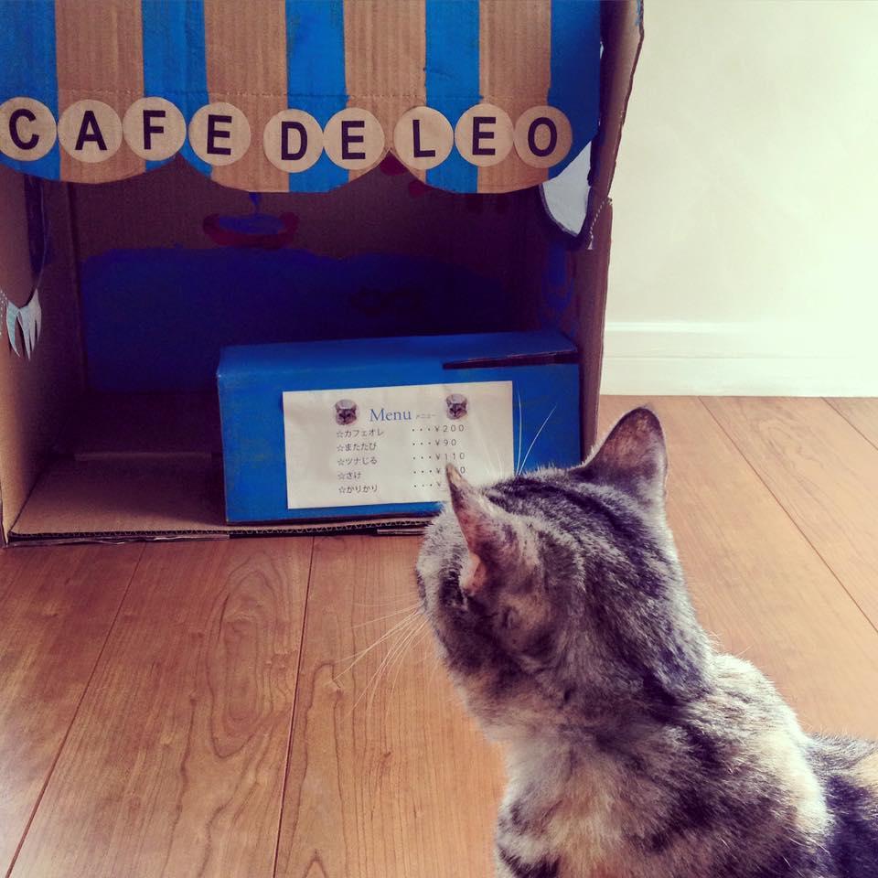 Cafe de Leo is closed today_b0195783_11202233.jpg