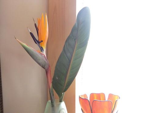 花と実_e0154400_15592862.jpg