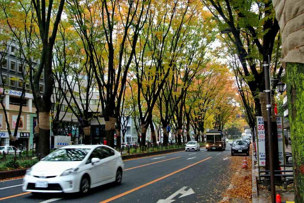 仙台市街にも紅葉が降りてきた_a0148206_19131524.jpg