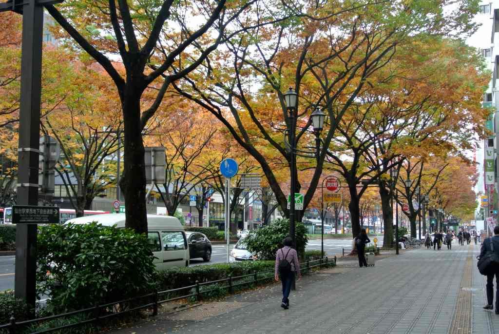 仙台市街にも紅葉が降りてきた_a0148206_195561.jpg