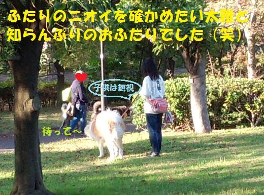 f0121712_9214495.jpg