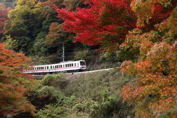 紅葉だより3 貴船神社2 エイデンと奥宮_e0048413_2038532.jpg