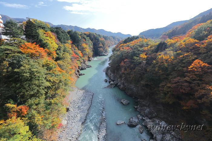 秋色 紅葉 ~2~ 鬼怒楯岩大吊橋_f0084337_10225426.jpg