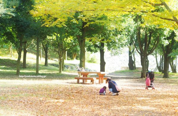 公園でのひとコマ_e0268051_11161021.jpg