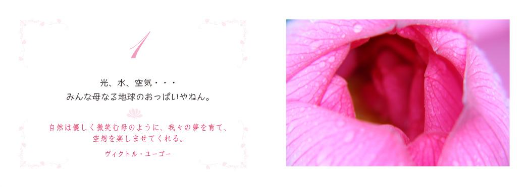 f0355165_9544285.jpg