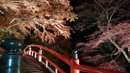 紅葉が身頃です。_e0160569_2114087.jpg