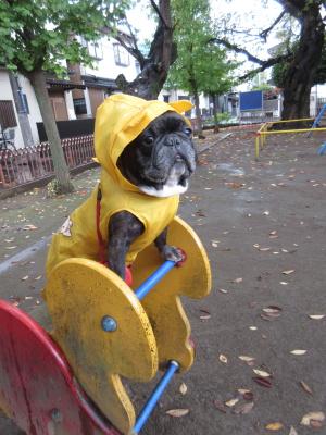雨..._a0027275_22372137.jpg