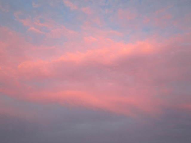 風になりたい・・・_a0180279_14200624.jpg
