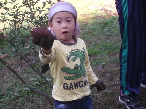 年少組とお芋さん_f0334882_17361887.jpg