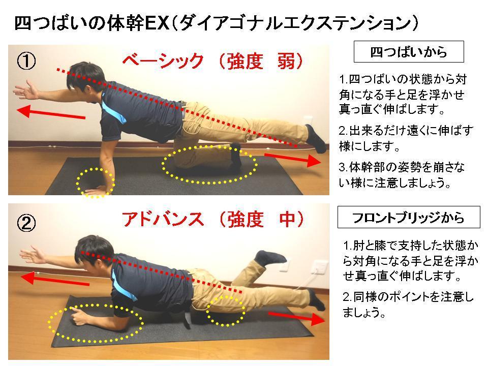 パフォーマンスを高めるための体幹トレーニング(No.1)_c0362789_11075194.jpg