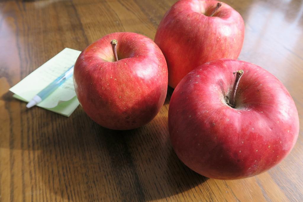落ちないリンゴ_f0138096_10132690.jpg