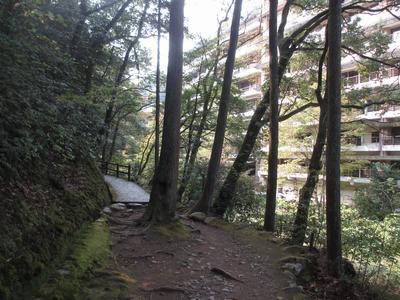 「山中温泉俳諧句碑」巡り⑮馬洗い川から「こおろぎ橋」へ_f0289632_19115720.jpg