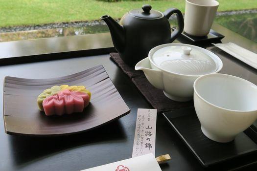 虎屋菓寮 京都一条店_c0134734_01021870.jpg
