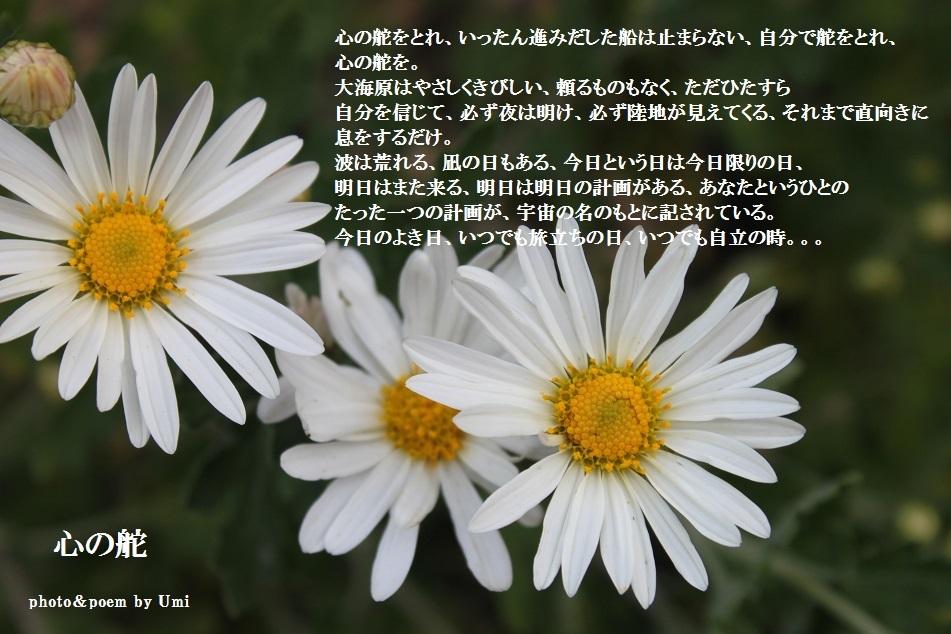 f0351844_10265285.jpg