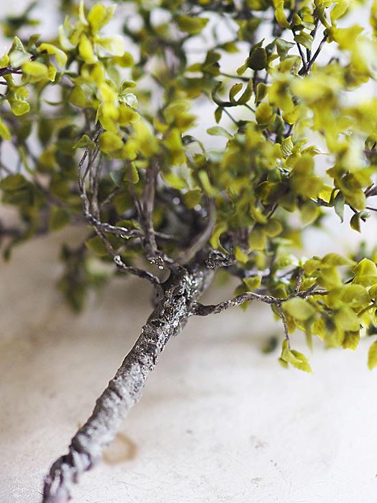 miniature* Tree できました_e0172847_14510351.jpg