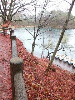FUKUAHIMA その4  サージュと五色沼トレッキングコース♪_a0165160_18044706.jpg