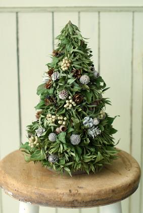 今月はクリスマス♪_d0167088_16443679.jpg