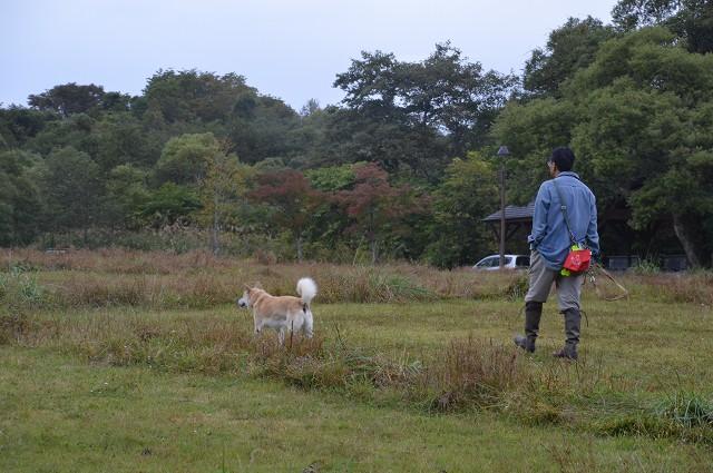 裏磐梯2013 ハチさんとキャンプ_c0124100_021029.jpg