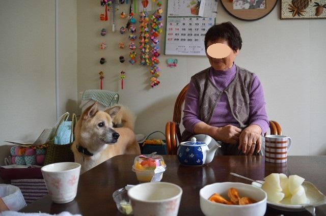 福島2013 叔母のいる仮設へ_c0124100_0483610.jpg