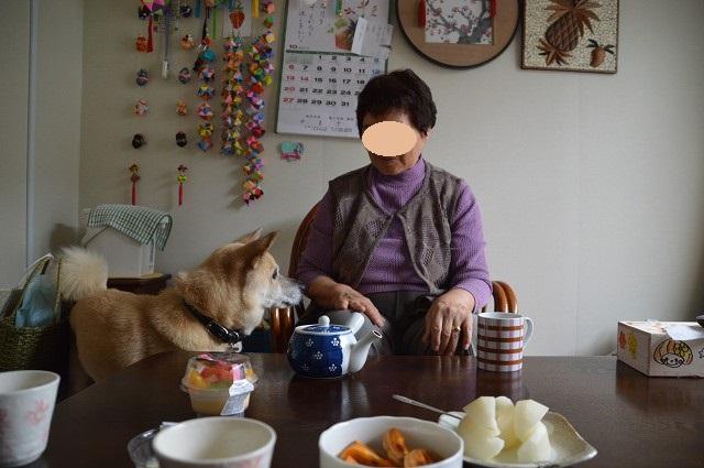 福島2013 叔母のいる仮設へ_c0124100_0494298.jpg