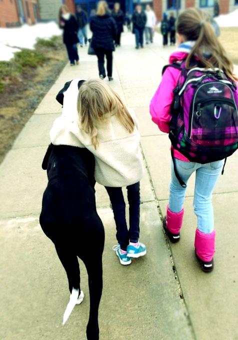 難病と闘う11歳の少女、ベラちゃんと犬のジョージ_b0007805_10261044.jpg