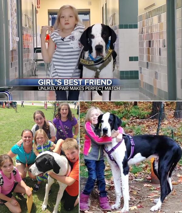 難病と闘う11歳の少女、ベラちゃんと犬のジョージ_b0007805_10262879.jpg