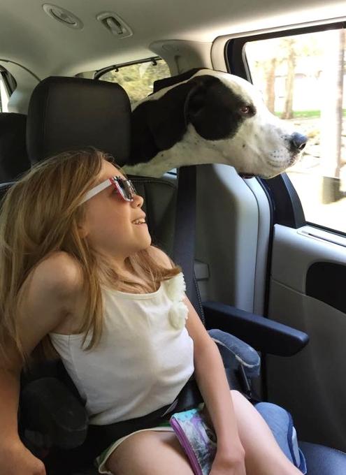 難病と闘う11歳の少女、ベラちゃんと犬のジョージ_b0007805_10271986.jpg