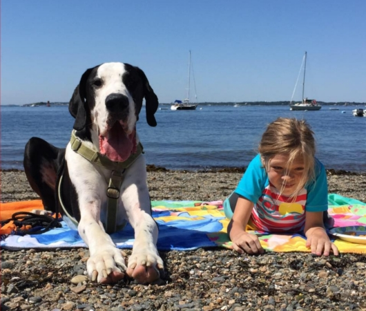 難病と闘う11歳の少女、ベラちゃんと犬のジョージ_b0007805_1027318.jpg