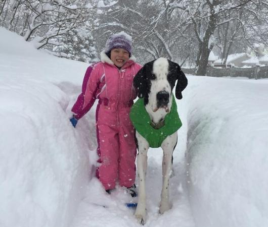 難病と闘う11歳の少女、ベラちゃんと犬のジョージ_b0007805_10274241.jpg