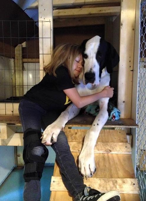 難病と闘う11歳の少女、ベラちゃんと犬のジョージ_b0007805_10284647.jpg