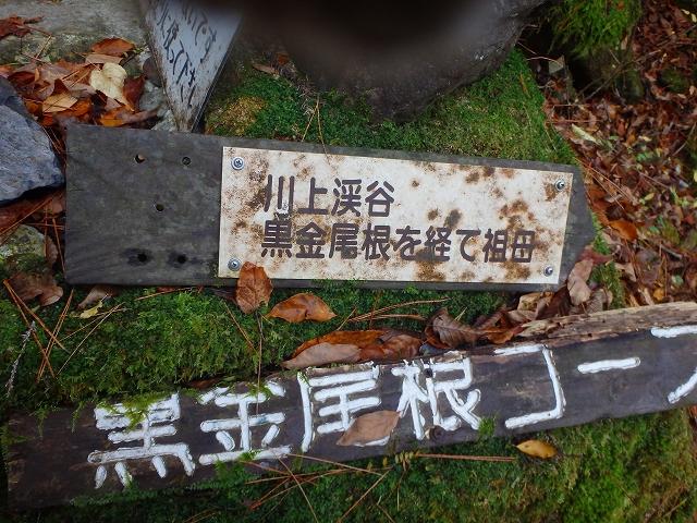 f0193521_925725.jpg